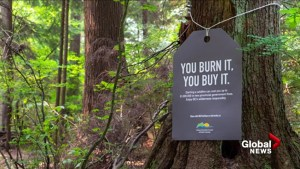 New campaign reminds people the cost of wildfires